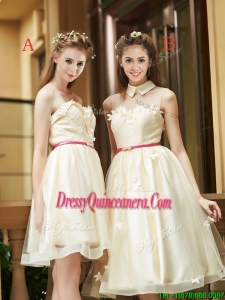 Best Selling Champagne Organza Dama Dress with Appliques and Sashes