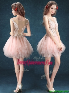 See Through Scoop Baby Pink Dama Dress with Appliques and Ruffles
