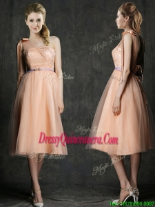 Wonderful One Shoulder Dama Dress with Sashes and Bowknot