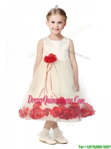 Best Scoop Mini Quinceanera Dress with Red Hand Made Flowers