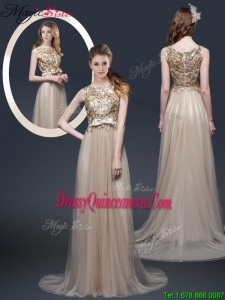 Spring Luxurious Brush Train Dama Dresses with Appliques and Bowknot