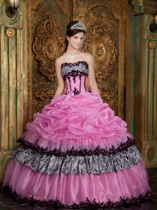 Rose Pink Taffeta Quinceanera Gown Dresses with Appliques and Picks-ups