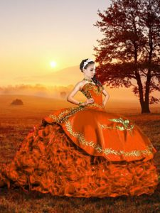 Lace Up Sweet 16 Quinceanera Dress Rust Red for Military Ball and Sweet 16 and Quinceanera with Embroidery and Ruffles Brush Train