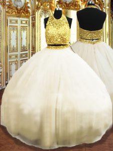 Elegant Champagne Ball Gowns Beading 15 Quinceanera Dress Zipper Tulle Sleeveless Floor Length