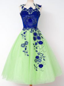 Nice Sleeveless Tulle Lace Up Dama Dress for Quinceanera for Prom and Party and Wedding Party