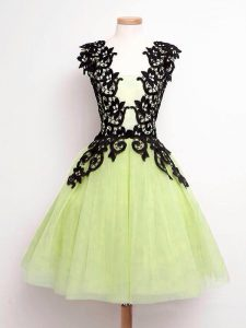 Perfect Tulle Sleeveless Knee Length Quinceanera Dama Dress and Lace