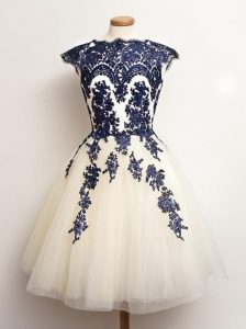 Nice Tulle Sleeveless Mini Length Damas Dress and Appliques