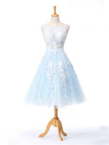 Vintage Light Blue Sleeveless Tulle Backless Dama Dress for Quinceanera for Prom and Party and Wedding Party