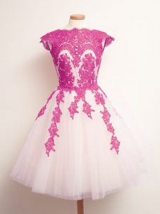 Mini Length Multi-color Quinceanera Dama Dress Tulle Sleeveless Appliques
