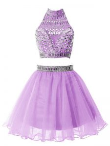 Wonderful Knee Length A-line Sleeveless Lilac Quinceanera Dama Dress Zipper