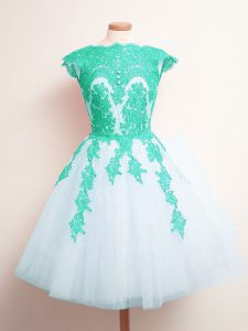 Fancy Sleeveless Tulle Mini Length Lace Up Vestidos de Damas in Multi-color with Appliques