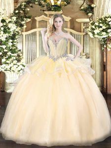 Popular Ball Gowns 15 Quinceanera Dress Champagne Sweetheart Organza Sleeveless Floor Length Lace Up