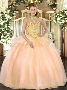 Peach Lace Up Halter Top Embroidery Vestidos de Quinceanera Organza Sleeveless