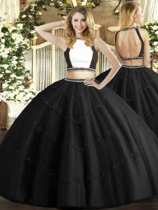 Best Floor Length Ball Gowns Sleeveless Black Sweet 16 Quinceanera Dress Backless