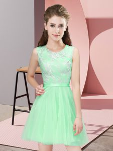 Colorful Sleeveless Lace Side Zipper Court Dresses for Sweet 16