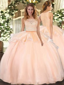 Scoop Sleeveless Organza Sweet 16 Dresses Lace Clasp Handle