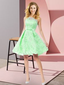 Scoop Sleeveless Lace Dama Dress Bowknot Zipper
