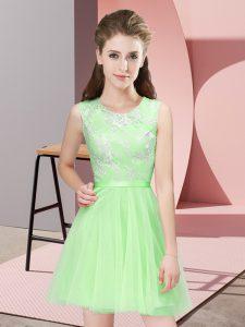 Sleeveless Side Zipper Mini Length Lace Court Dresses for Sweet 16