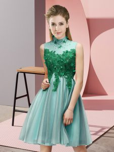 Attractive Empire Court Dresses for Sweet 16 Light Blue High-neck Tulle Sleeveless Knee Length Lace Up