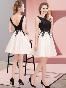 Lace Quinceanera Dama Dress Champagne Zipper Sleeveless Mini Length