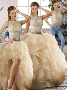 Fancy Champagne Sleeveless Organza Zipper Quinceanera Gown for Sweet 16 and Quinceanera