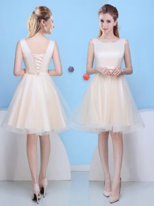 New Arrival Scoop Sleeveless Lace Up Quinceanera Court of Honor Dress Champagne Tulle