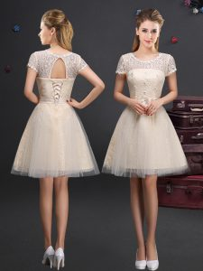 Ideal Scoop Champagne Short Sleeves Mini Length Lace and Appliques and Belt Lace Up Dama Dress for Quinceanera