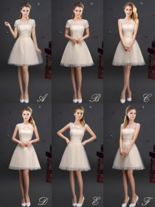 A-line Quinceanera Dama Dress Champagne V-neck Tulle Sleeveless Mini Length Lace Up