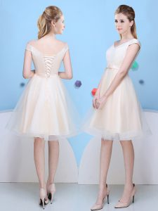 V-neck Cap Sleeves Lace Up Dama Dress for Quinceanera Champagne Tulle