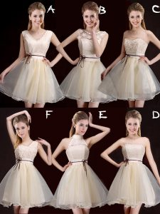 Exceptional Mini Length A-line Sleeveless Champagne Court Dresses for Sweet 16 Lace Up