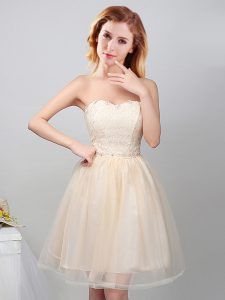 Stylish Tulle Sweetheart Sleeveless Lace Up Lace and Appliques Damas Dress in Champagne