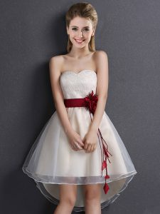 Super A-line Court Dresses for Sweet 16 Champagne Sweetheart Organza Sleeveless High Low Lace Up