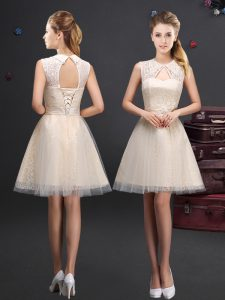 Fine Champagne Lace Up Dama Dress Lace and Appliques and Belt Sleeveless Mini Length