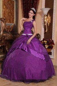 2014 Dark Purple One-shoulder Organza and Taffeta Quinceanera Dress with Appliques