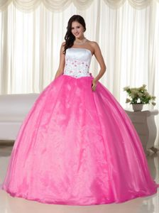 Embroidery Strapless Floor-length Organza Quinceanera Dress in Hot Pink