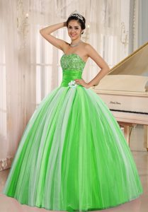 2013 New Arrival Multi-color Tulle Quincanera Dresses with Hand Flower
