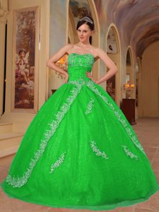 Spring Green Sweetheart Organza Beaded Quinceanera Dress with Appliques