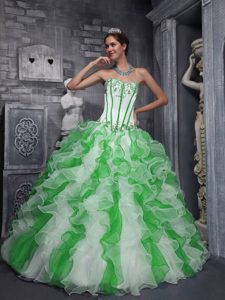 Luxurious Taffeta and Organza Long Quinceanera Dress in Green and White