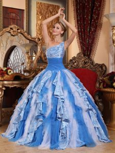 Multi-color Ball Gown One Shoulder Ruffled Quince Dresses with Zebra Print