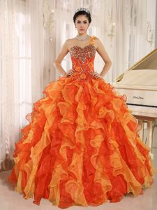 Floral Orange One Shoulder Beading Quinceanera Gown Dresses with Ruffles