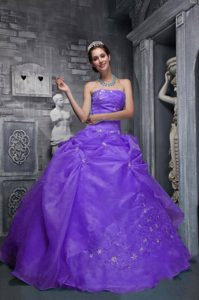 Gorgeous Purple Taffeta Strapless Appliques Pick-ups Dress for 15