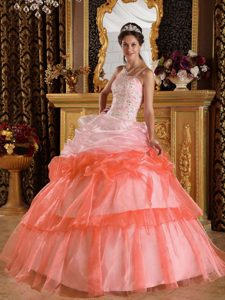 One Shoulder Elegant Dress for Quince with Appliques in Organza