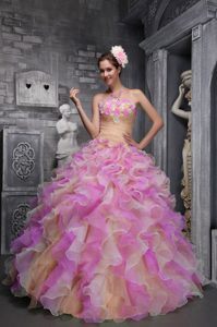 Lovely Multicolor Organza Quinceanera Gown Dress with Hand Made Flowers