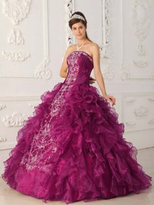 Fuchsia Strapless Embroidery Dress for Quinceanera in Satin and Organza