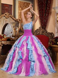 Multi-color One Shoulder Ruffled Tulle and Zebra Quince Dress with Lace-up