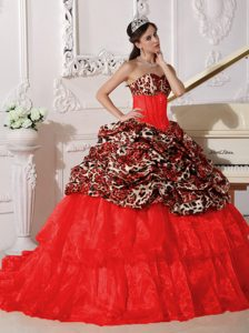 Red Sweetheart Appliqued Sweet Sixteen Dresses in Leopard and Organza