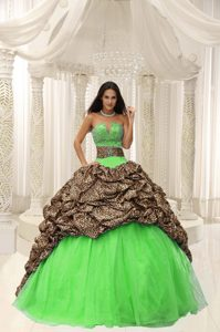 Beaded Organza Affordable Quince Dresses in Leopard and Organza