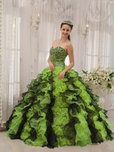 Elegant Multi-color Organza Beaded Quinceanera Gown Dresses for 2014