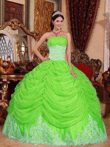 Spring Green Beaded Organza Elegant Quinceanera Dress with Appliques