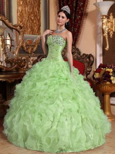 Light Green Sweetheart Organza Ruched Quinceanera Dress with Beading and Ruffles